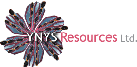 Ynys Resources Ltd.